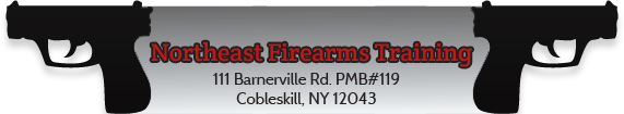 Northeast Firearms Training Retina Logo